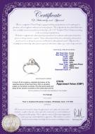 product certificate: UK-AK-W-AAA-67-R-Andrea