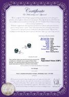product certificate: UK-B-AAA-657-E-Akoy