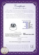 product certificate: UK-FW-B-AAA-1112-R-Wendy
