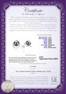 product certificate: UK-FW-B-AAAA-78-E-Raina