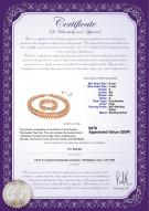 product certificate: UK-FW-P-A-67-S-DBL