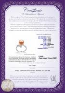 product certificate: UK-FW-P-AAAA-910-R-Grace