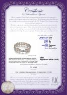 product certificate: UK-FW-W-A-67-B-DBL