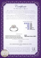 product certificate: UK-FW-W-AAAA-67-R-Joy