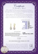 product certificate: UK-FW-W-AAAA-89-E-Sparkle