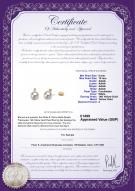 product certificate: UK-FW-W-AAAA-910-E-Eternity-YG-L