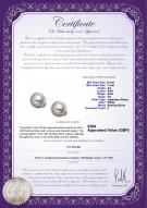 product certificate: UK-JAK-W-AA-67-E-Jocelyn