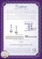 product certificate: UK-JAK-W-AA-78-E-Colleen