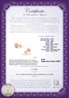product certificate: UK-P-67-E