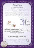 product certificate: UK-P-910-E