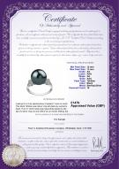 product certificate: UK-TAH-B-AA-1213-R-Ireland