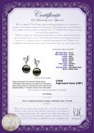 product certificate: UK-TAH-B-AAA-910-E-Jeannie