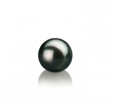 7-8mm AAA Quality Japanese Akoya Loose Pearl in Black