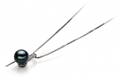 7-8mm AA Quality Japanese Akoya Cultured Pearl Pendant in Destina Black