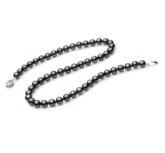 7-7.5mm AAA Quality Japanese Akoya Cultured Pearl Necklace in Black