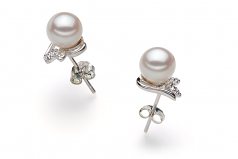 6-7mm AA Quality Japanese Akoya Cultured Pearl Earring Pair in Jodie White