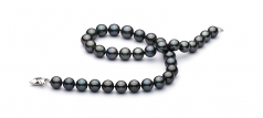 11.2-13.8mm AA+ Quality Tahitian Cultured Pearl Necklace in Black