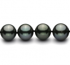 11.3-12.2mm AAA Quality Tahitian Cultured Pearl Necklace in Black