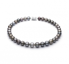11-14.6mm AAA Quality Tahitian Cultured Pearl Necklace in Multicolour