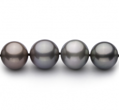 9.2-13.9mm AA+ Quality Tahitian Cultured Pearl Necklace in Multicolour