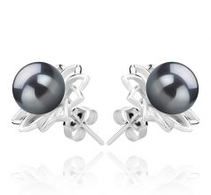 7-8mm AAAA Quality Freshwater Cultured Pearl Earring Pair in Morgan Black
