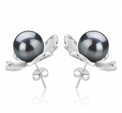 10-11mm AAA Quality Tahitian Cultured Pearl Earring Pair in Abigail Black