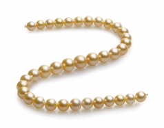 10-13.5mm AAA Quality South Sea Cultured Pearl Necklace in 18-inch Gold