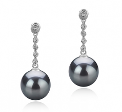 9-10mm AAA Quality Tahitian Cultured Pearl Earring Pair in Ariel Black