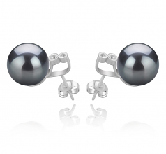 10-11mm AAA Quality Tahitian Cultured Pearl Earring Pair in Hailey Black