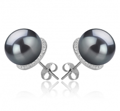 10-11mm AAA Quality Tahitian Cultured Pearl Earring Pair in Tammy Black