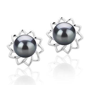 7-8mm AAAA Quality Freshwater Cultured Pearl Earring Pair in Morgan Black