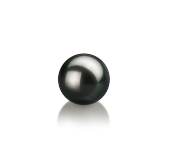 Black 7-8mm AA Quality Japanese Akoya Cultured Pearl Loose Pearl
