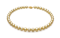 Gold 9.04-11.83mm AAA Quality South Sea 14K Yellow Gold Pearl Necklace